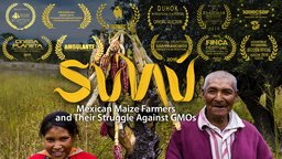 Sunú - Mexican Maize Farmers